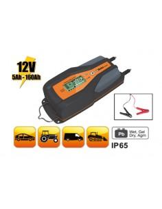 Caricabatterie elettronico 12V auto-veicoli commerciali 1498/8A